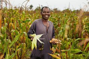 Lối thoát cho nạn thiếu dinh dưỡng ở châu Phi?