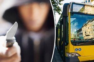 Tấn công bằng dao trên xe buýt ở Đức, 10 người bị thương