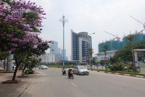 Doanh nghiệp góp sức xây dựng đô thị xanh