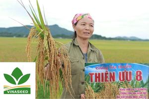 Quảng cáo 'láo' khiến nông dân thiệt hại 600 tỉ đồng, doanh nghiệp nói gì?