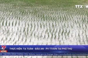 Mưa lớn kéo dài gây thiệt tại Phú Thọ