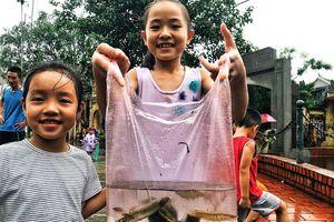 Trẻ con Hà Nội mang rổ, rá bắt cá giữa phố ngày mưa ngập