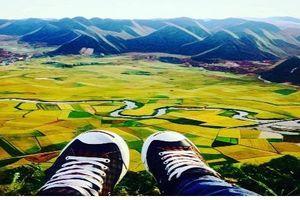 Săn ảnh nghìn like với cảnh đẹp 'mê hồn' của Bắc Sơn mùa lúa chín