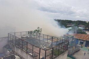 TP.HCM: Cháy xưởng sản xuất ghế sofa, nhân viên siêu thị kế bên vội vã chuyển hàng