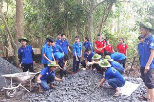 Thanh niên tình nguyện làm đường bê tông vào nhà Mẹ Việt Nam anh hùng