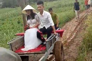 Chuyện chưa biết về đám cưới chú rể đón dâu bằng xe trâu