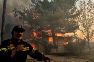 Cháy rừng Hy Lạp lan rộng, số người thiệt mạng tăng hơn gấp đôi