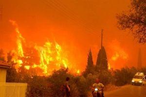 Hy Lạp: Cận cảnh 'quỷ lửa' nuốt trọn gần 100 ngôi nhà, ít nhất 74 người chết