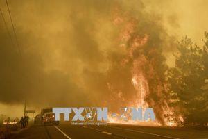 Công viên quốc gia Yosemite của Mỹ bị đóng cửa do cháy rừng