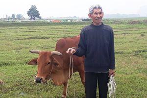 Thanh Hóa: Kiểm điểm Chủ tịch xã vụ bắt trâu bò 'cõng' phí gặm cỏ