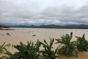 Thiệt hại do mưa lũ tiếp tục tăng