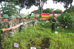 Huấn luyện cho bộ đội nhận biết và sử dụng rau rừng