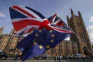 Chia tách tư cách thành viên tại WTO, con đường Brexit của Anh vẫn lắm chông gai