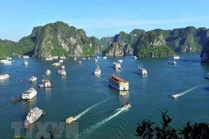5 du khách quốc tế bị 'bỏ rơi' được hỗ trợ dịch vụ tàu nghỉ đêm trên Vịnh Hạ Long