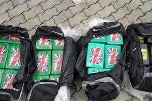 Cổ phiếu Thép Pomina lao dốc sau nghi vấn nhập 119 kg Cocain