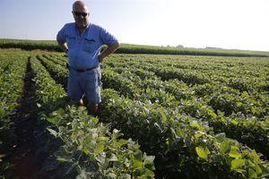 Buồn vui của nông dân Mỹ