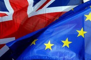 Tỷ lệ cử tri Anh ủng hộ tiến hành trưng cầu ý dân lần hai gia tăng