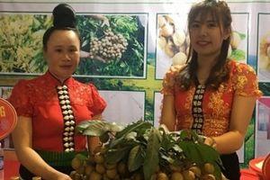 Sơn La: Hàng nghìn người đội mưa dự Hội nhãn Sông Mã 2018