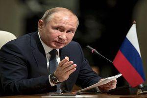 Tổng thống Putin mời ông Trump thăm Moscow, sẵn sàng gặp thượng đỉnh lần 2