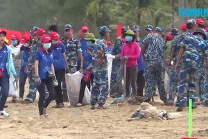 Hơn 500 người nhặt rác, làm sạch bãi biển Phú Quốc
