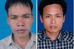 Quảng Nam: Hai nghi can cầm đầu vụ phá rừng lim xanh đã đầu thú