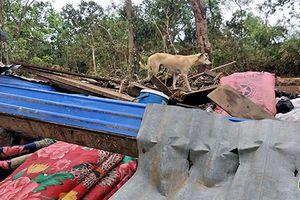 Họp báo nóng: Số người chết tăng lên sau thảm họa vỡ đập ở Lào
