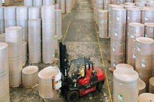 Nguồn nguyên liệu mới cho ngành giấy
