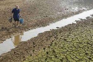 Nhiều tác nhân gây ô nhiễm nguồn nước