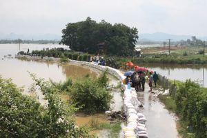 Hà Nội: Huy động hơn 500 người hộ đê tả Bùi tại Chương Mỹ