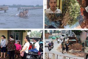 Tin tức Hà Nội 24h: Trồng cần sa trong căn hộ chung cư; Trẻ em bất chấp bơi lội khi đường thành sông