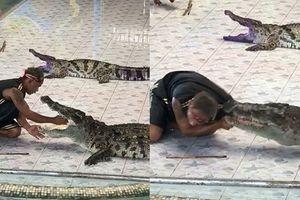 Kinh hoàng khoảnh khắc cá sấu 'đớp ngọt' cánh tay người huấn luyện