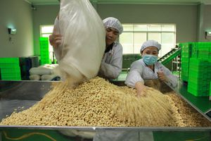 Nông sản Việt lượng nhiều nhưng giá rẻ