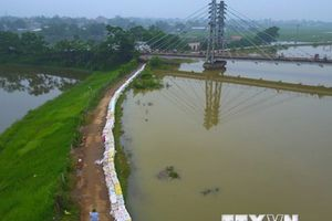 Hà Nội: Mực nước sông Bùi đã ổn định nhưng xuống rất chậm