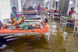 Ấn Độ: Lũ lụt tàn phá khiến hơn 600 người thiệt mạng