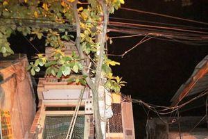 Hòa Bình: Hàng loạt nhà dân bị 'trượt' xuống sông Đà trong đêm