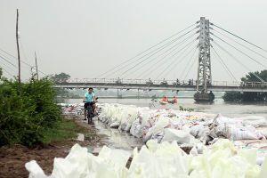 Hà Nội: Dân sông Bùi giám hộ đê từng phút lo nước tràn vào