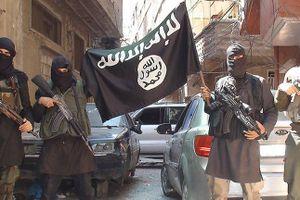Chỉ trong vòng 8 ngày, gần 188 tay súng IS bị tiêu diệt ở Syria