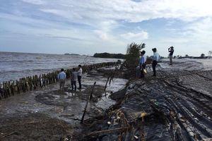 Khẩn cấp cứu hộ đê biển Tây Cà Mau