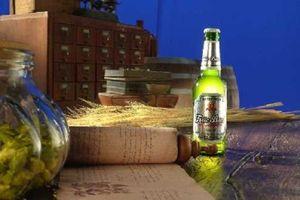 Habeco 'thay áo mới' cho thương hiệu bia Trúc Bạch