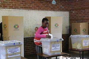 Đảng cầm quyền Zimbabwe giành đa số ghế trong Quốc hội