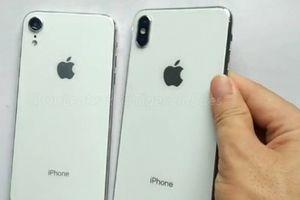 HOT: Đã có video trên tay iPhone 9 và iPhone X (2018)