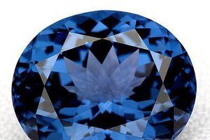 Viên kim cương xanh giá 20 triệu USD bị đánh cắp bí ẩn được tìm thấy trong hộp giày