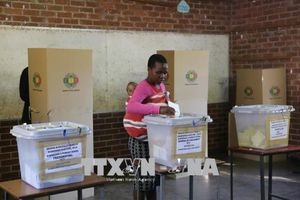 Công bố kết quả chính thức cuộc bầu cử Zimbabwe