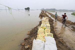 Hà Nội: Sẵn sàng phương án xả nước bảo vệ đê