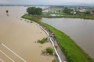 Hơn 6000 người phải sơ tán vì mực nước sông Bùi vượt báo động 3