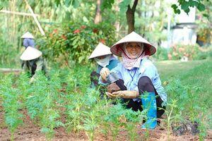 Ecopark và cách giải bài toán lao động địa phương