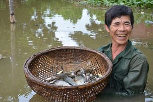 Chuyện khó tin ở nơi vẫn còn có chim chóc sinh sôi, tôm cá, ếch nhái nhảy 'đầy đồng'