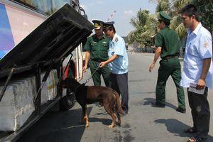 An Giang: Tăng cường xác lập chuyên án chung để đấu tranh hiệu quả với buôn lậu
