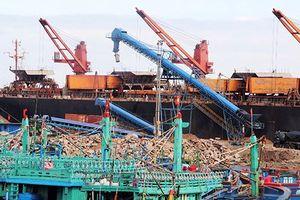 Buộc dừng thi công cầu cảng Quy Nhơn