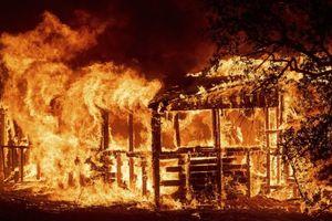 Chùm ảnh: Cháy rừng lịch sử, tiểu bang California tan hoang sau đống tro tàn
